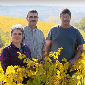 domaine les grandes vignes famille vaillant vin bio l'envin agent paris