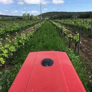 francois xavier daure domaine des lampyres roussillon organic wines