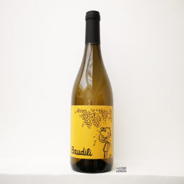 vin blanc bio baudili 2019 du domaine mas candi de catalogne espagne