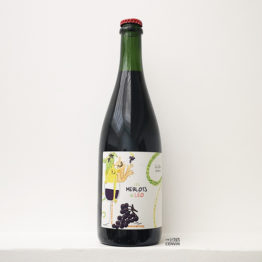 Bouteille de vin Les merlots de leo 2019 produit par henri duporge du Château Le Geai à Bordeaux, vin rouge nature distribué par l'envin sur paris ile de france loiret export