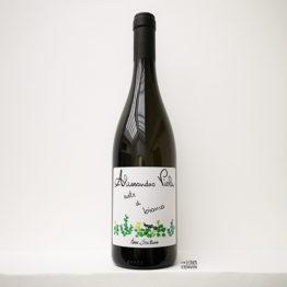 Alessandro viola sicile vin blanc note di bianco lenvin agent paris