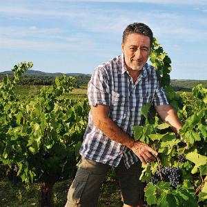 philippe richy stella nova l'envin biodynamic wines agency paris france