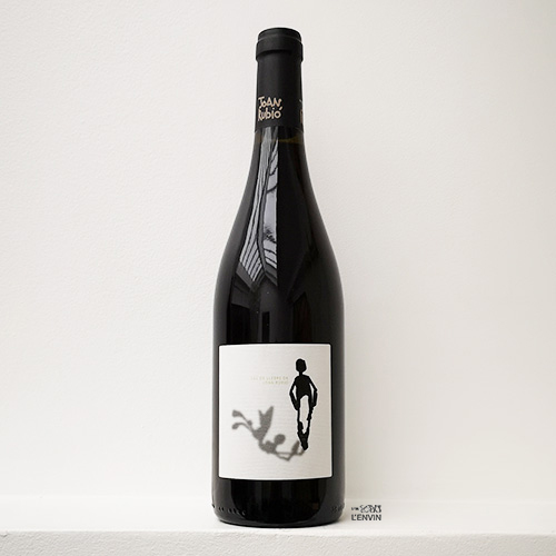 bouteille de ull de llebre 2018 un vin rouge bio catalan produit par cal tiques en espagne et distribué par l'envin a paris ile de france et loiret