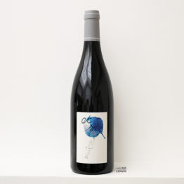 bouteille de vin rouge de gamay Et si 2019 de la vigneronne Anne-Cécile Jadaud du domaine Perrrault-Jadaud dans la Loire et distribué par l'agence de vins bio et nature l'envin sur paris ile de france loiret export